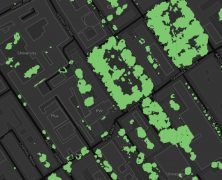 Tree Canopy Cover